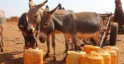 Wajir county set to access KES143m for climate change adaptation and resilience building